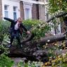 HAIES D'HORREUR. Pour le jeune Theo Harcourt, 13ans, ce matin pas comme les autres restera sans doute gravé dans sa mémoire. En route pour son école du quartier d'Islington, dans le nord de Londres, il a dû escalader les arbres brisés et déracinés par Christian, la première grande tempête de la saison, qui jonchaient la rue. Une étrange et triste course de haies. La Grande-Bretagne a essuyé, le 28octobre, sa tempête la plus importante en cinq ans, entraînant la mort d'au moins 4personnes.