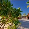 Pied dans le sable pour prendre un verre ou déjeuner. Au premier plan, le bar. Au fond, le restaurant Beach Comber.