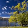 Niché au pied de majestueuses montagnes, le lac Wanaka est le plus tranquille de l'île du Sud.