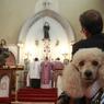 Sous le coup d'une procédure d'expulsion depuis septembre dernier et après des mois de procédures juridiques, l'église Sainte-Rita a fermé ses portes dimanche 15 mars.
