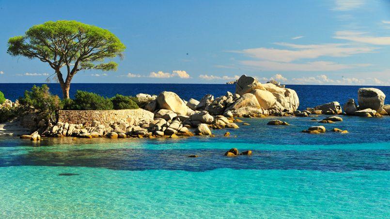Chapp e belle en corse - Office du tourisme porto corse ...