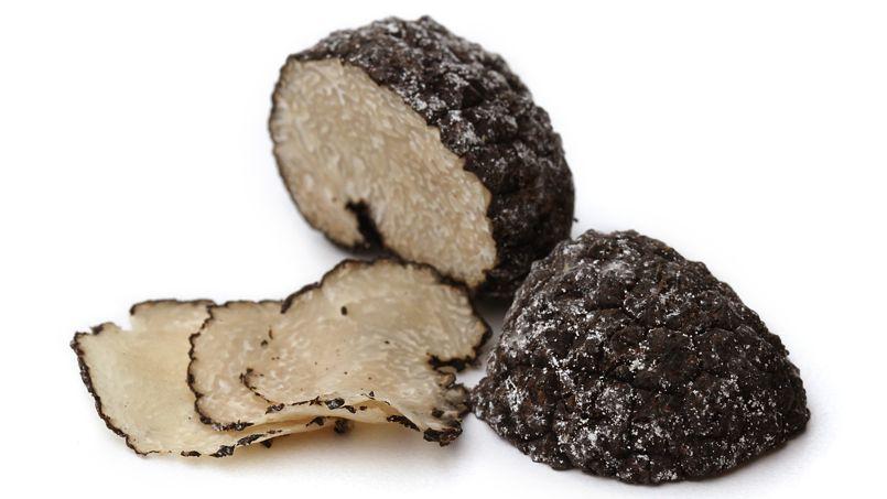 La science au secours de la truffe noire - Comment cuisiner les truffes noires ...