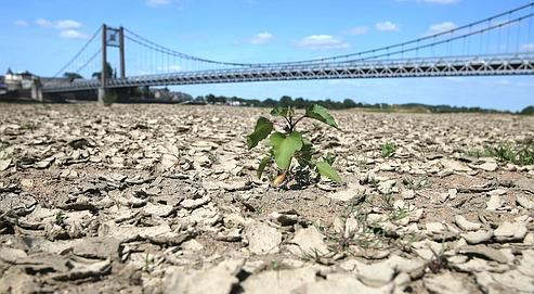 Sécheresse: des restrictions d'eau pour tous