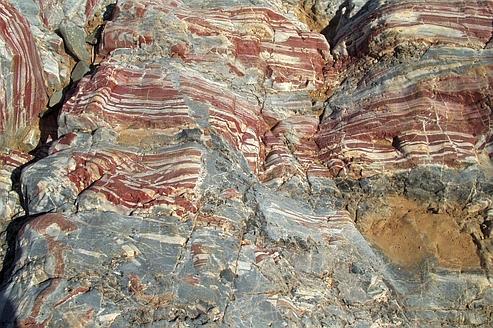 Les plus vieux fossiles auraient 3,4milliards d'années