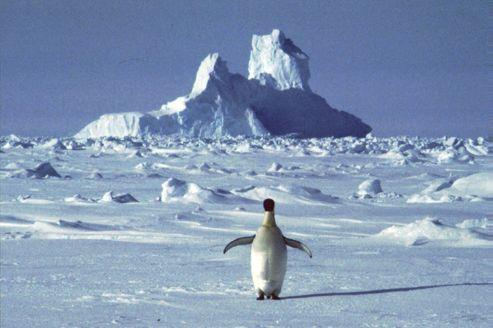 L'Antarctique se réchauffe plus vite que prévu