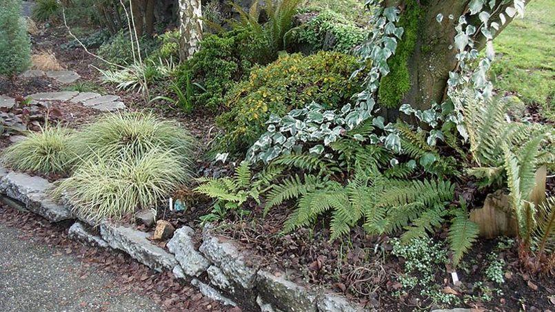 Au jardin ce week end soignez vos bordures - Jardins ouverts au public ce week end ...