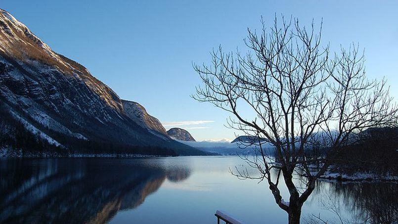 «La variabilité naturelle du climat suffit à expliquer cet hiver très doux»