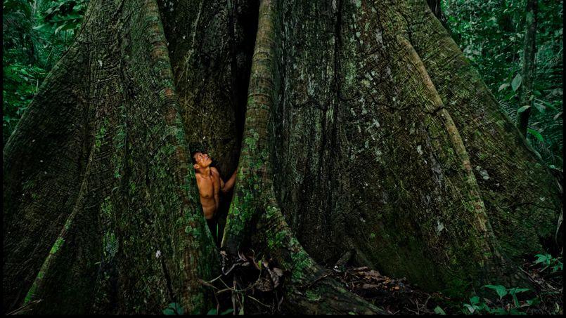 Pérou, l'Amazonie rêvée