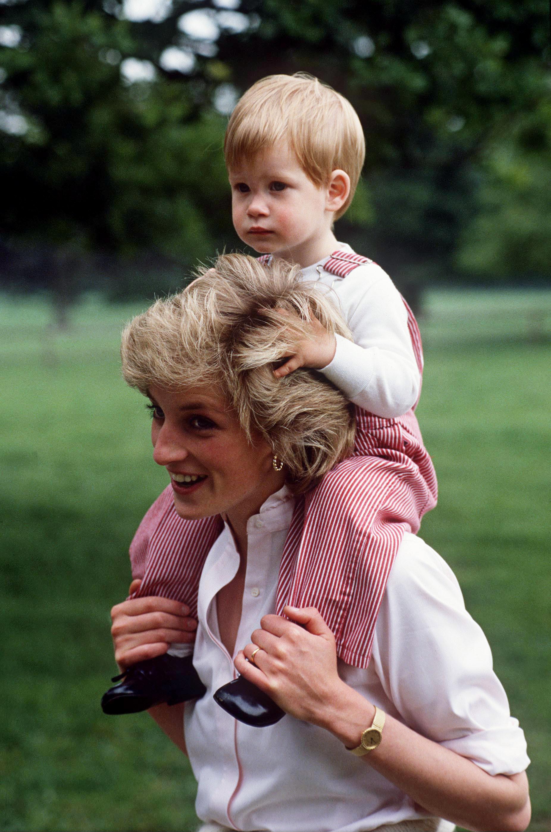 Les plus beaux hommages des princes Harry et William à Lady Diana