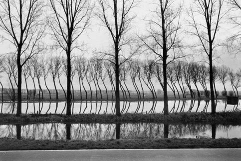 Réflexions au bord d'un canal, Pays-Bas 1994