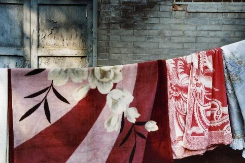 Nature morte (inédit), Pékin 2005