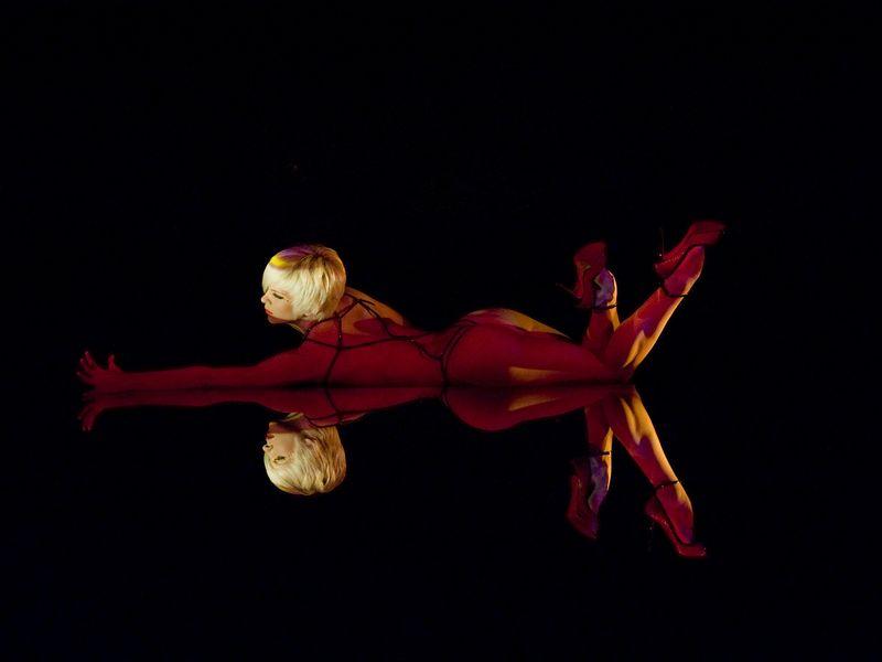 Upside Down (tableau de Philippe Découflé)