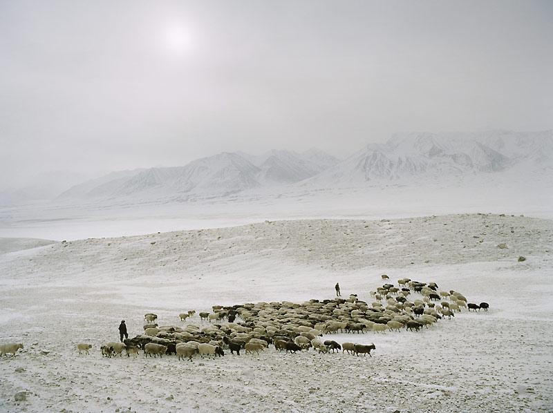 Vivant au coeur de vastes étendues désertiques, cette communauté nomade est arrivéelà voilà 150 ans.