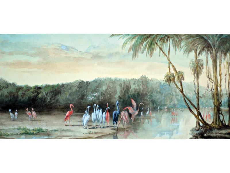 Aquarelle aux flamants roses, composition postérieure d'inspiration polynésienne.