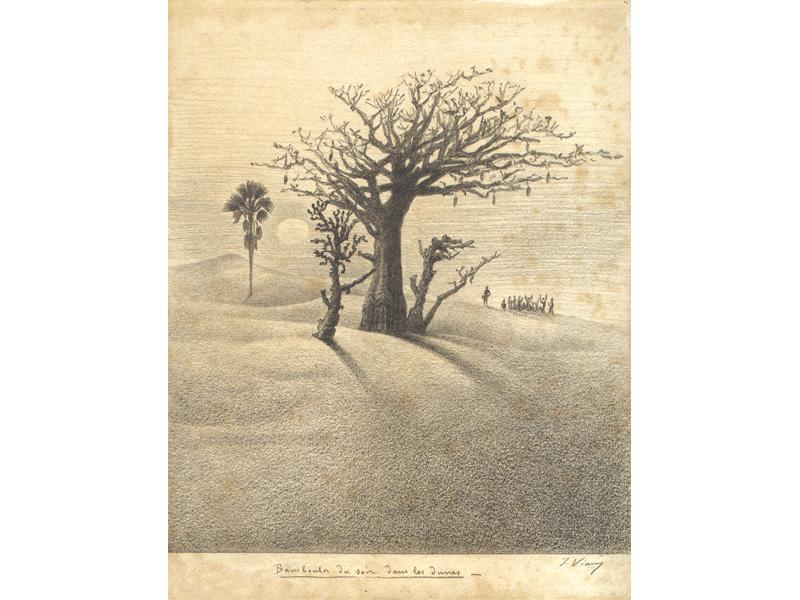 Bamboula du soir dans les dunes. Février 1874.