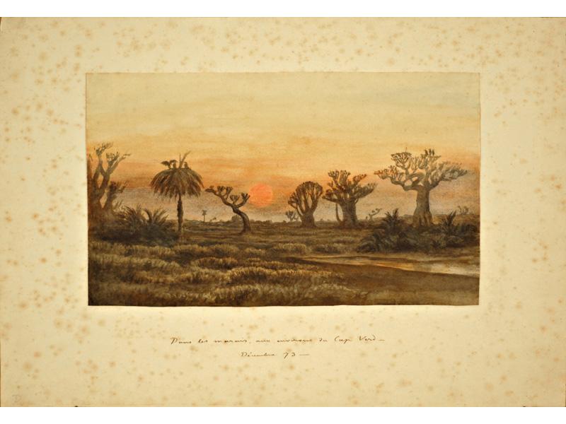 Dans les marais, aux environs du Cap-Verd – / Décembre 73. Aquarelle