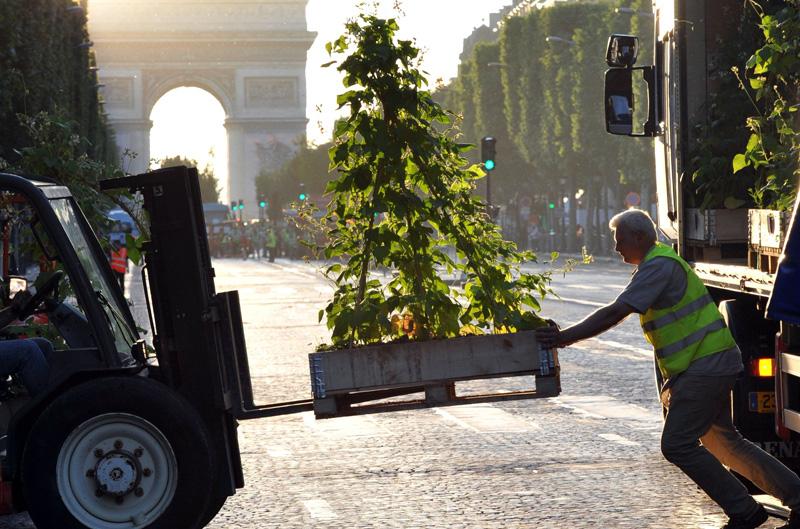 Les agriculteurs ont pris leurs quartiers dimanche matin sur les Champs-Elysées transformés en jardin, pour une opération de charme de deux journées auprès des citadins, alors que le secteur connaît une des plus graves crises de ces dernières décennies.