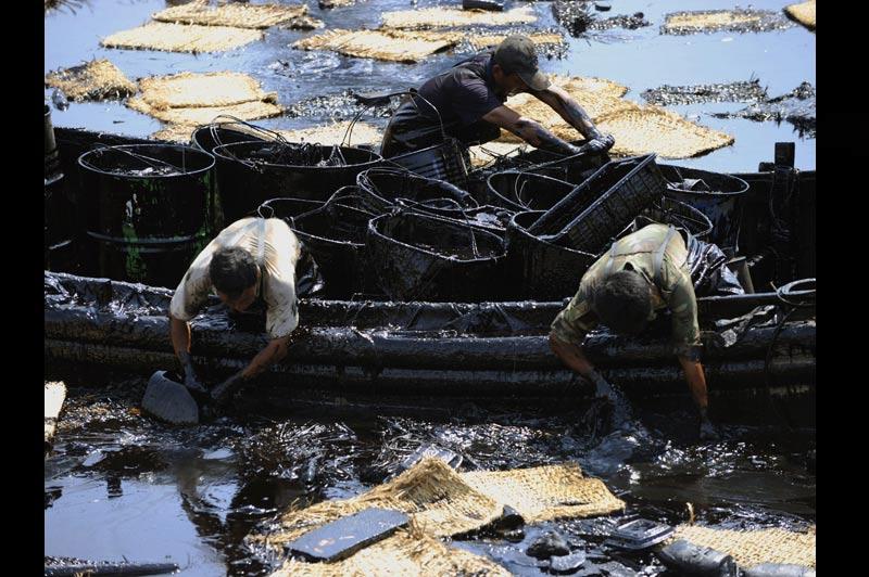 Sous contrôle… Mardi 27 juillet, des ouvriers achèvent le nettoyage de la marée noire qui polluait depuis neuf jours le port de Dalian, dans le nord-est de la Chine. La pollution a eu lieu après l'explosion de deux oléoducs qui a déversé quelque 1.500 tonnes de pétrole dans la mer Jaune.