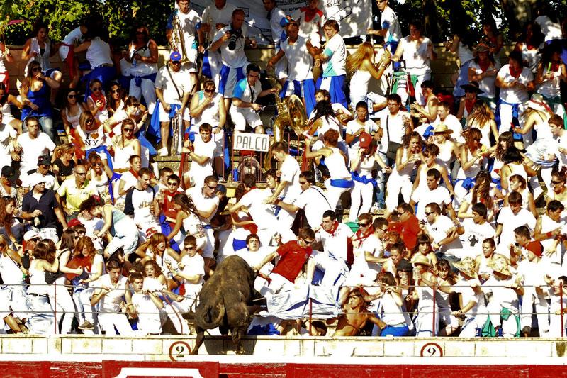 Lors des «recortadores» de Tafalla, près de Pampelune (Espagne), un taureau saute hors des arènes et plonge dans les gradins, mercredi 18 août.