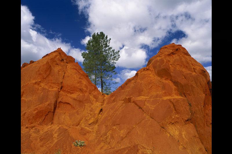 Rustrel, le Vaucluse version westernDes roches torturées par le vent, des tons ocre, des arbres qui poussent sur du caillou: ce décor de western, qui rappelle le paysage du Bryce Canyon, en Utah, se situeà Rustrel, dans le Vaucluse. Pour une fois, la nature n'est pas l'unique créatrice de cet étonnant paysage. Le sous-sol de Rustrel a été exploité dès la fin du XIXe siècle pour son ocre. L'érosion a terminé le travail en sculptant les carrières abandonnées, leur donnant cette apparence fantastique.