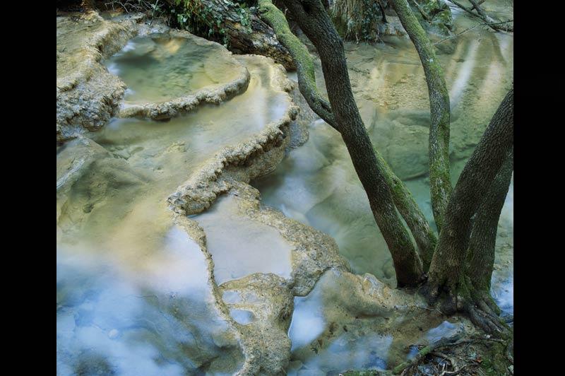 La Provence comme un parc américain Yellowstone, le plus ancien parc naturel du monde, s'étend sur une superficie supérieure à celle de la Corse. Il est célèbre pour ses phénomènes naturels : les geysers, sources d'eau chaude. C'est aussi le plus grand« super volcan » d'Amérique du Nord. Mais au diable ces superlatifs ! Les sources de l'Huveaune, ce fier petit fleuve provençal, rivalisent crânement avec lesMammothHot Springs de Yellowstone. Ses vasques sont façonnées par des eaux chargées en calcaire à l'issue d'un long parcours à travers le massif de la Sainte-Baume.