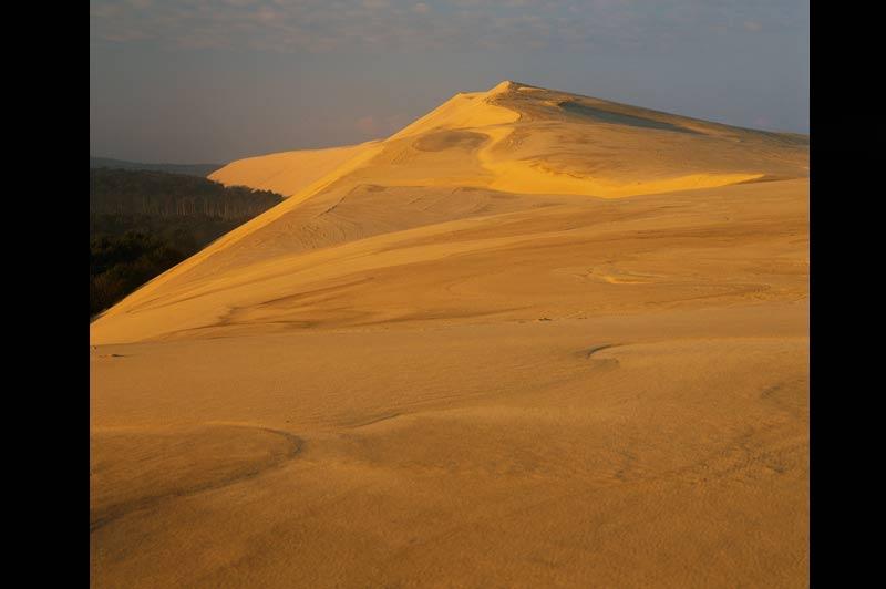 Parcs à huîtres au SaharaComme une palmeraie perdue dans le Grand Erg oriental, blottie contre la dune. La masse verte des pins des Landes qui poussent au pied de la dune du Pyla joue ici les cousinages avec les palmiers dattiers de Tozeur, Nefta ou Touggourt. Posée en bordurede l'océan Atlantique, au sud du bassin d'Arcachon, la dune du Pyla étire ses 2700 m entre la mer et la forêt. Nourrie par le vent du large, elle avance en moyenne de 3 à 4 m par an vers les terres, avalant progressivement la forêt landaise. Les pins font, eux aussi, les frais de l'avancée des sables..