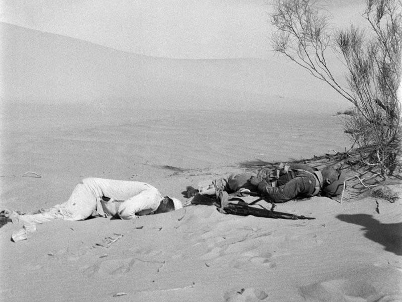 29 octobre 1956. Égypte, Gaza«La guerre du Sinaï est le premier conflit que j'ai couvert en tant que photojournaliste. J'ai pris ces photos avec un Rolleicord qui montrent des soldats égyptiens tués lors d'une attaque israélienne alors qu'ils tentaient de fuir pieds nus.»