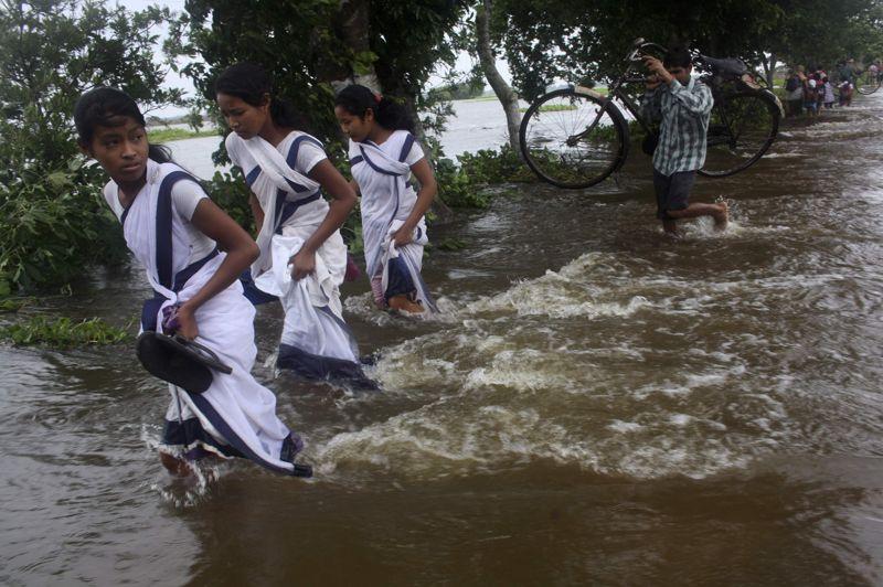 En crue, le fleuve Brahmapoutre traverse l'État d'Assam sur plusieurs centaines de kilomètres. Les routes sont coupées et les terres agricoles sont submergées.