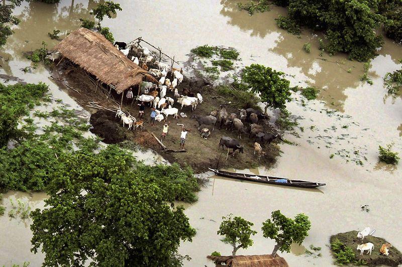 Selon les autorités locales, 79 personnes sont décédées. «Certaines sont mortes dans des naufrages d'embarcations, d'autres se sont noyées en tentant d'échapper aux inondations, d'autres dans des glissements de terrain», ont-elles déclaré.