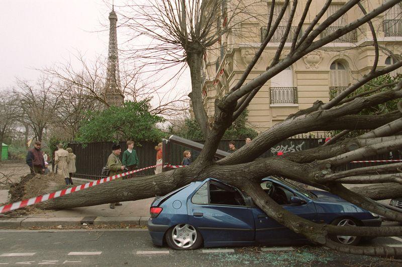FRANCE - La catastrophe naturelle la plus coûteuse de l'histoire se situe loin derrière ce «top ten». Les tempêtes Lothar et Martin de décembre 1999 qui ont également touché la Suisse, l'Allemagne et le Danemark, ont en effet coûté près de 8 milliards de dollars de dégâts à la France et provoqué la mort de plus de 90 personnes. Des vents violents ont été mesurés à plus de 350 kilomètres par heure. Près de 140 millions de m3 de bois ont été abattus en France. De 2001 à 2010, 670 catastrophes naturelles ont frappé l'Hexagone, à un rythme moyen de 67 événements par an. Le bilan humain fait état de plus de 15.000 morts, dont plus de 14.000 provoquées par la seule canincule de 2003. Si l'on ne tient pas compte de cette catastrophe exceptionnelle, ce sont les avalanches qui ont été les plus mortelles, avec 194 décès (26 % du total des victimes). Viennent ensuite les vagues de chaleur, 137 morts, soit 18,6%, et les tempêtes qui ont fait 103 victimes, 14%.
