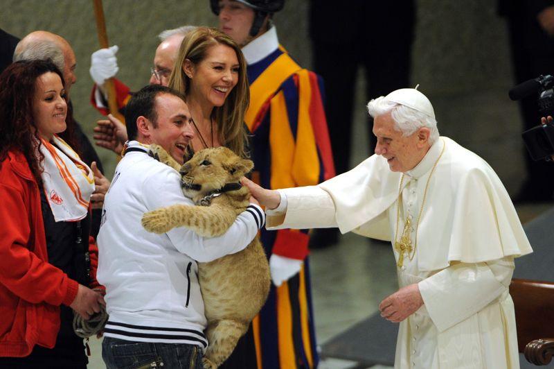Un vrai cirque!Tel Monsieur Loyal, le pape Benoît XVI est entré en piste, recevant des représentants du monde du cirque. Il a rencontré de nombreux clowns, acrobates et autres magiciens, les encourageant à continuer «à étonner et susciter l'émerveillement, à offrir des occasions de fête et de sain divertissement». La ménagerie n'a pas été laissée de côté, et le pape a prêté une attention toute particulière à ce lionceau. Une image à mille lieues de la solennité représentative du Vatican.