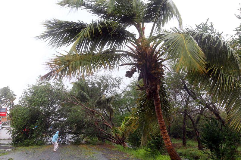 À Saint-Paul, dans l'ouest de l'île, des arbres ont été arrachés par la tempête, bloquant ainsi les routes. Les vents violents ont commencé à balayer cette île française de l'Océan indien depuis le début de la matinée, atteignant 176 km/h sur les hauteurs, dans l'ouest.