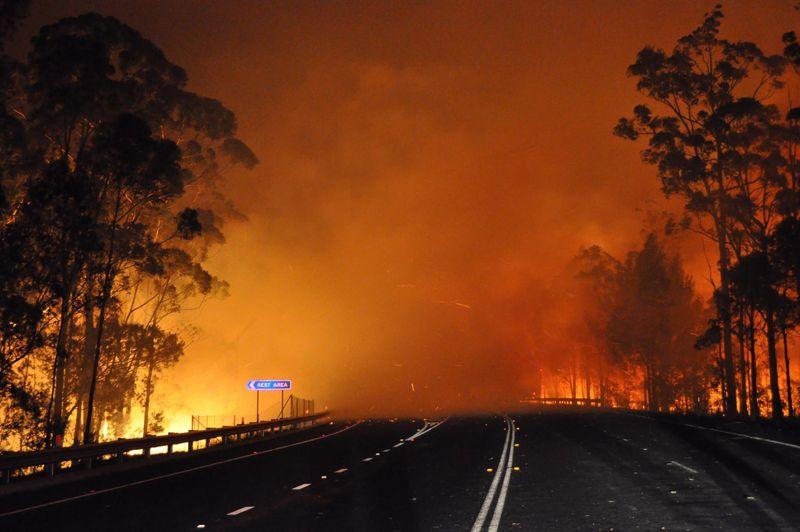 De nombreux incendies provoqués par une canicule, accompagnée de vents violents, ont frappé l'Australie depuis plusieurs jours (ici mardi dans l'État de Nouvelle-Galles du Sud). Les températures ont atteint 45°C dans certaines régions. Quelque 2000 pompiers combattaient depuis mardi plus de 140 foyers, dont une trentaine n'étaient toujours pas maîtrisés mercredi, ravageant habitations et bétail.
