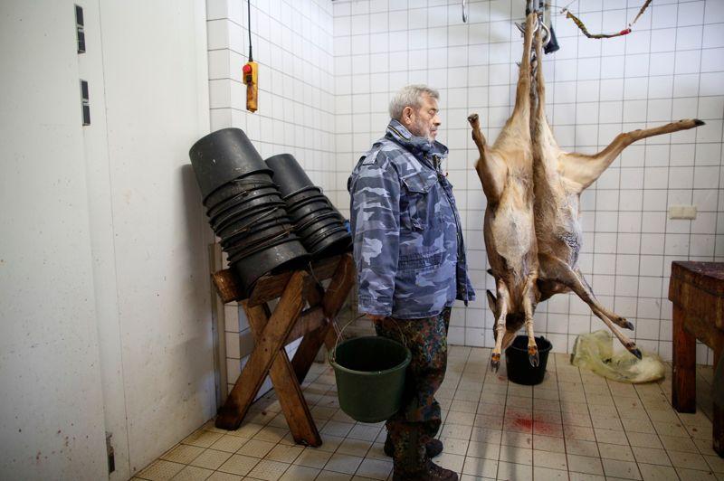 Werner Freund se tient près de cadavres de jeunes cervidés, dont il nourrira les loups du «Wolfpark», un sanctuaire de 10 hectares qu'il a ouvert dans la Sarre.