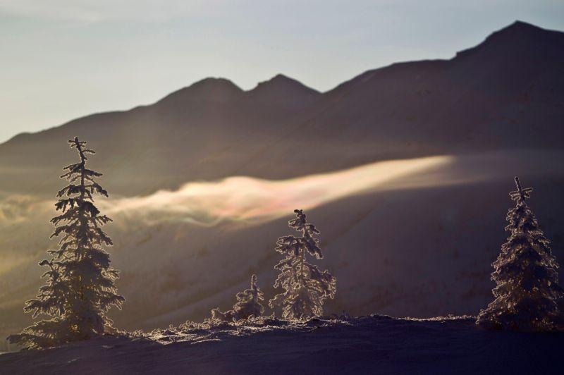 Les températures les plus froides ont été enregistrées dans la vallée d'Oïmiakon. Selon le Met Office de Grande-Bretagne, une température de -67,8°C y a été mesurée en 1933.