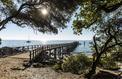 Atlantique : des racines et des îles