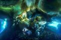 Salon de la plongée : les plus belles photos sous-marines