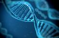 L'ADN se transforme en disque dur