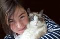 La passion des chats, une véritable catmania