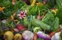 Le gaspillage alimentaire ne se joue pas seulement dans nos frigos