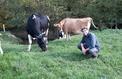 Ces agriculteurs Youtubeurs qui dévoilent les dessous de leurs « vraies fermes »