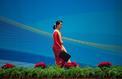 Aung San Suu Kyi, la chute d'une idole planétaire