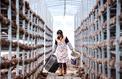 En Chine, les paysans du Guizhou dans le piège de la misère