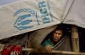 La Birmanie construit un camp pour les Rohingyas