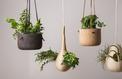 Des pots sur mesure pour plantes bien au chaud