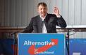 Allemagne : l'AfD profite de sa stratégie de radicalisation sans limite