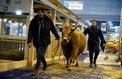Agriculture : quatre dossiers très épineux pour l'exécutif