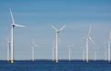 Éoliennes en mer: l'État veut alléger la facture