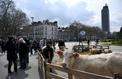 Notre-Dame-des-Landes: crispations autour de l'avenir des terres