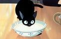 Viendrez-vous à bout de notre test sur les superstitions ?